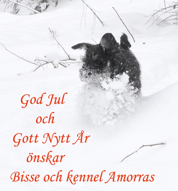 God jul önskar jag er alla!!!