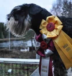 Dansk vinnare Rufus DKVV