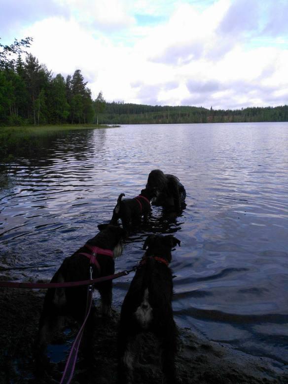 Agnes o Kajsa badar juni 2017