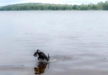 Kajsa badar skutt 20180625