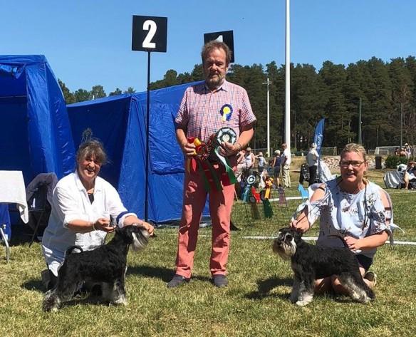 Qaston BIR Champion Leksand 2018