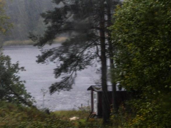 Natur regn2 20180929