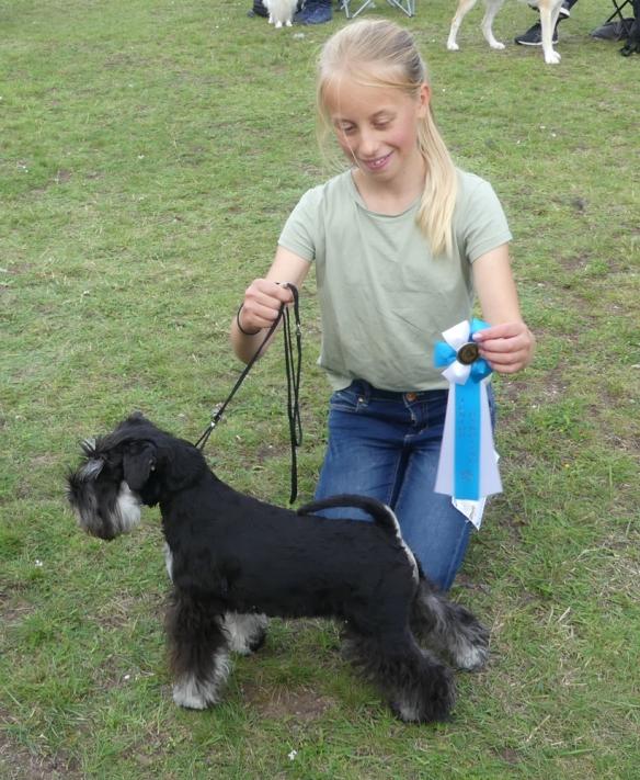 Nedansiljan inoff utst Albus o Matilda juniorhandling rosett 20190818 (1 av 1)